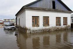 Репортаж с потопа