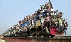 Если «зайцев» на поезде возят, значит это кому-то выгодно