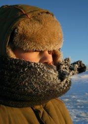 В Уральске отменены занятия в школах