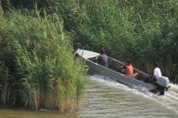 Рыба в Урале  Задыхается